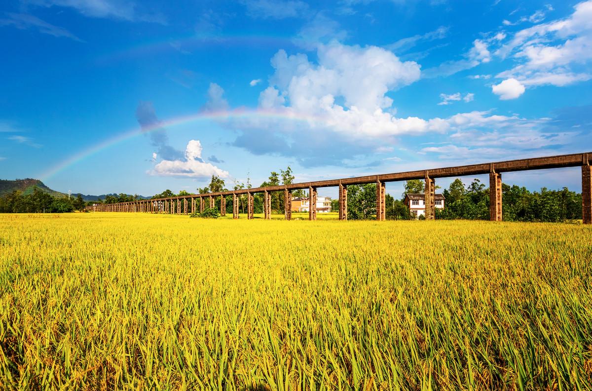 重庆市:提速工程建设项目审批制度改革